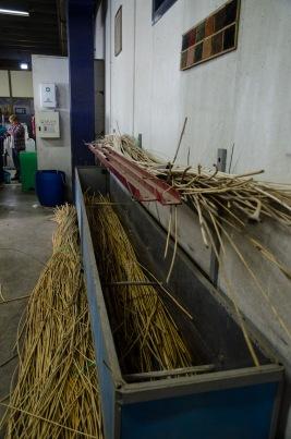 die Weidenruten werden über Nacht eingeweicht